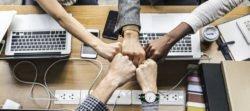 Neu bei uns: StartUp-Jobs / Stellenanzeigen